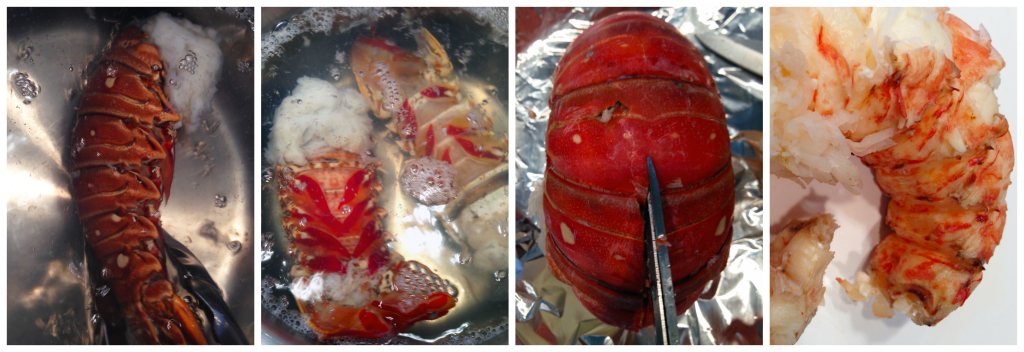 lobster cooking